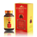 Cordy Plus ถั่งเช่า คอร์ดี้ พลัส สารสกัดจากถั่งเฉ้า เก็บเงินปลายทางทั่วประเทศ